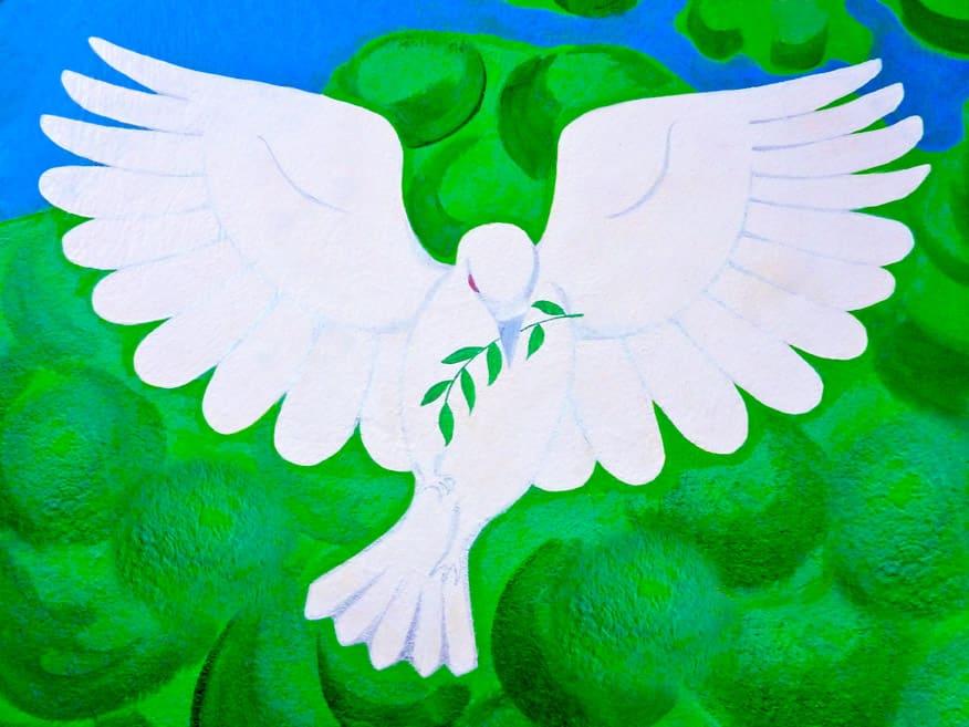 White Peace Dove copy